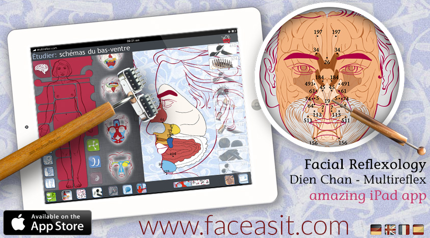 reflexology charts and maps of the face